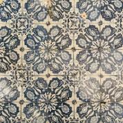 Tegelveld van tegels met het ornament Afrikaansveren/ Compilation of tiles with Afrikaansveren-20